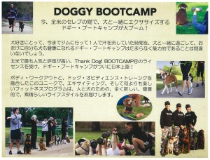 DOGGY BOOTCAMP1